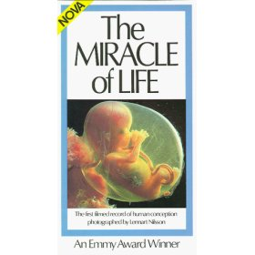 miracle-of-life